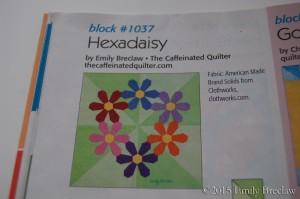 hexadaisy for Quiltmaker